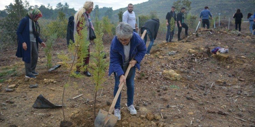 Muğla'da ağaçlandırma seferberliği