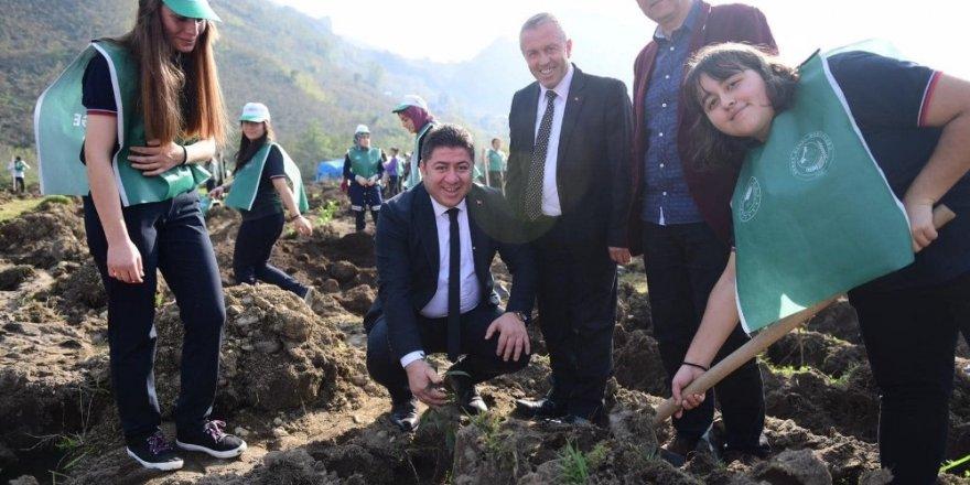 Altınordu Belediyesinden okullara ağaç katkısı