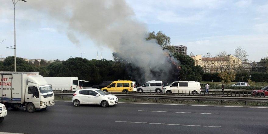 Otoyol kenarında bulunan çam ağaçları alev alev yandı