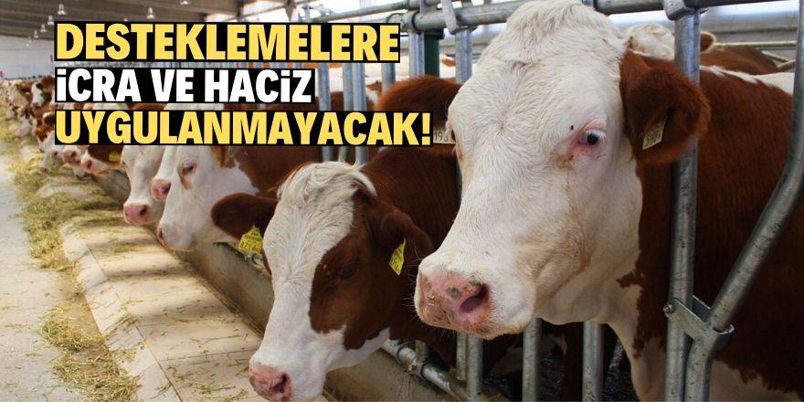 Hayvancılık destekleme tebliği yayımlandı