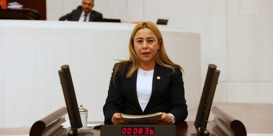 MHP Milletvekili Esin Kara, mali reform istedi
