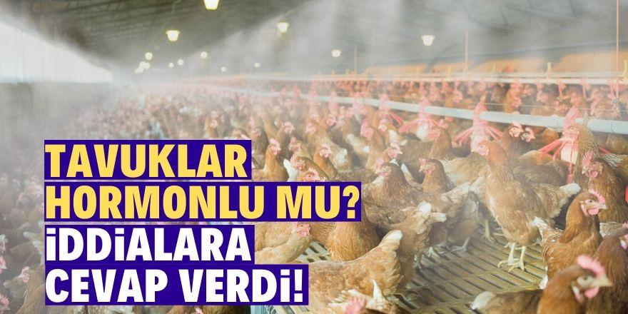 40 günde 2 kg tavuk mu üretilir?