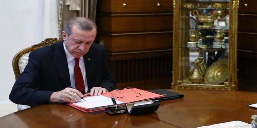 Erdoğan'a yeni danışman!