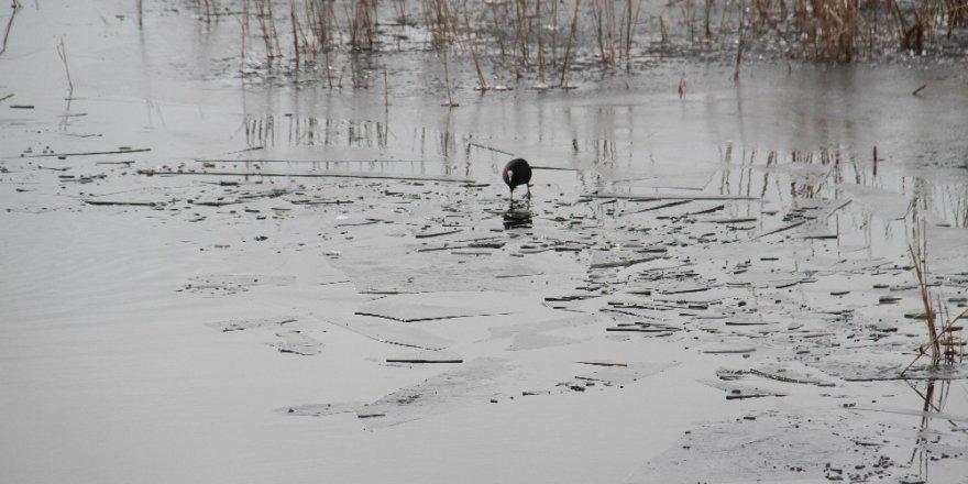 Beyşehir Gölü'nü buz tuttu