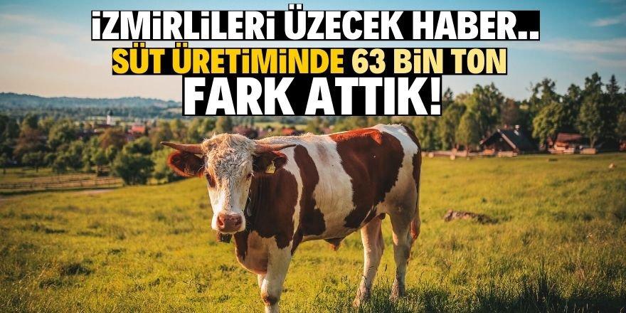 Süt üretiminde hesaplar tutmadı