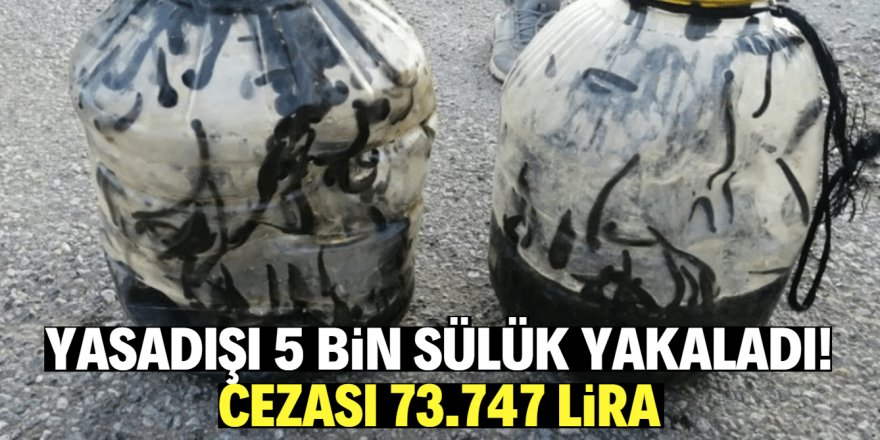 Yasadışı sülük avına 73 bin lira para cezası