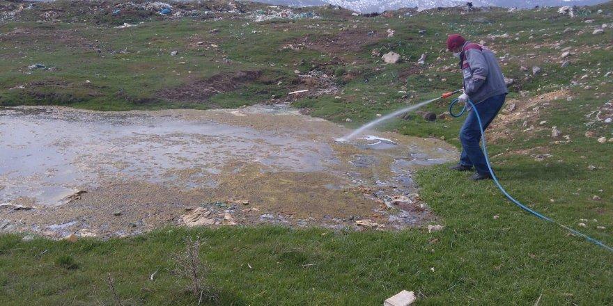 Seydişehir'de haşare ile mücadele sürüyor