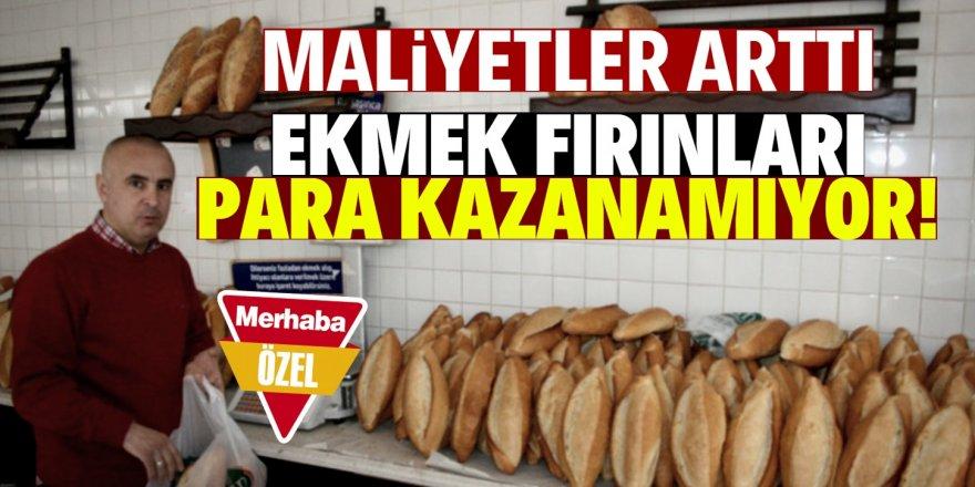 Ekmek satışları yüzde 50 düştü!