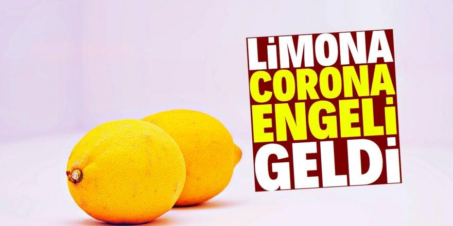 Limon ihracatı izne bağlandı!