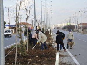 Karamanda ağaçlandırma çalışmaları devam ediyor