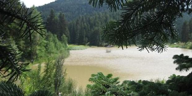 Akgöl Sulak Alanı eski günlerine kavuştu