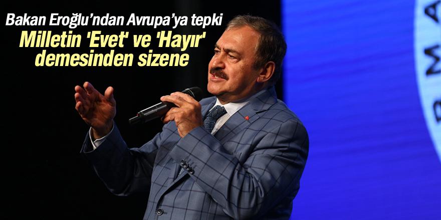 Orman ve Su İşleri Bakanı Eroğlu, Konya'da