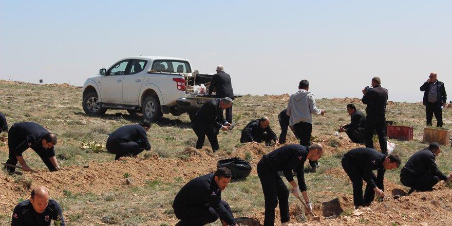 İnfaz koruma memurları 15 Temmuz şehitleri anısına 249 fidan dikti