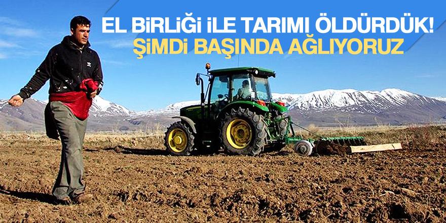 El birliği ile tarımı öldürdük, şimdi başında ağlıyoruz!
