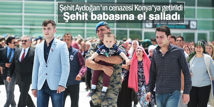 Şehit Aydoğan'ın cenazesi Konya'ya getirildi