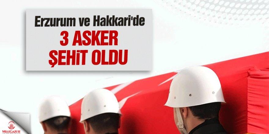 Erzurum ve Hakkari'den üzücü haber