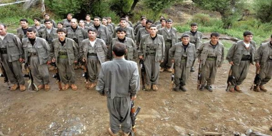 HDP'li belediye PKK'lılara ekmek gönderdi