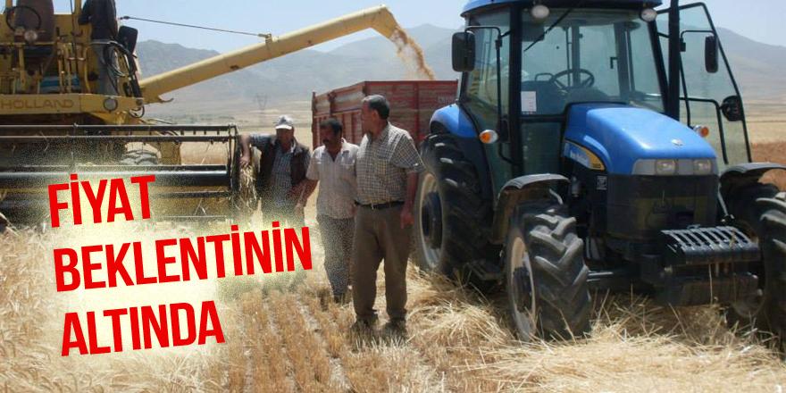 Buğday ton fiyatı beklentinin altında