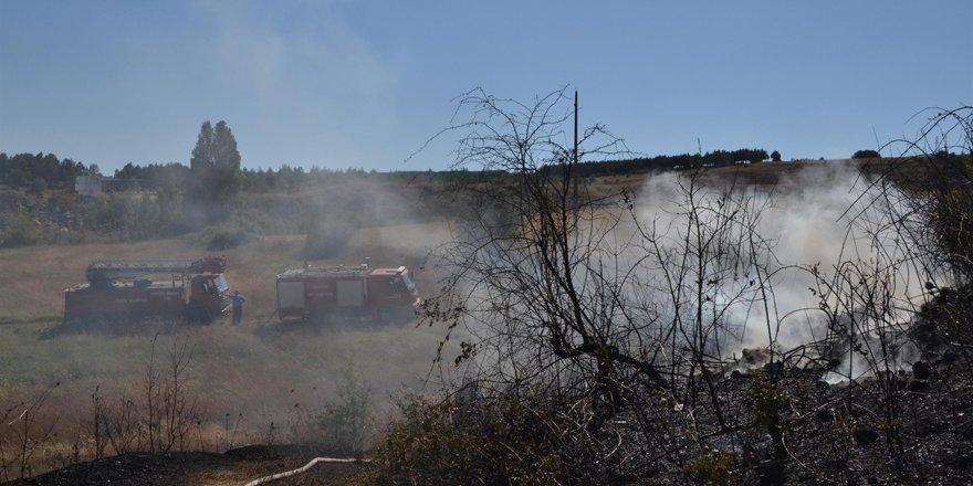 Kuruyan otlarda yangın tehlikesi