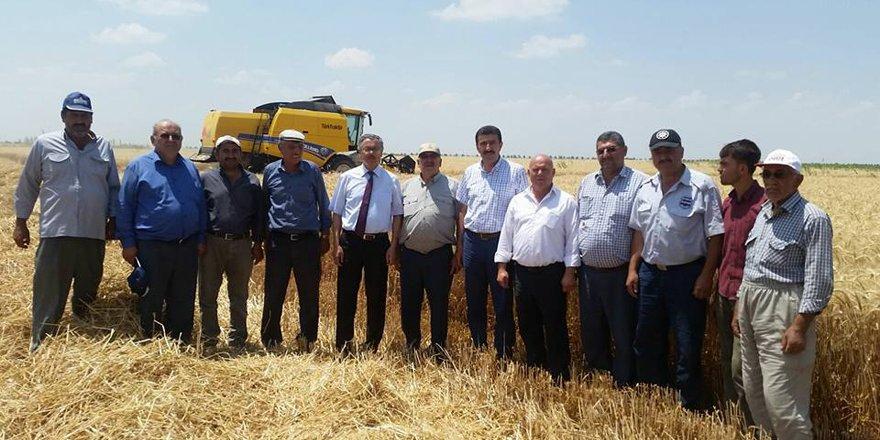 Karatay'da hasat devam ediyor