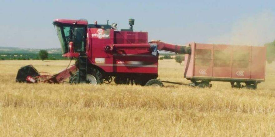TMO, Seydişehir'de 600 ton buğday aldı