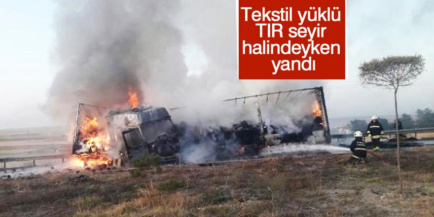 Seyir halinde alev alan TIR yandı