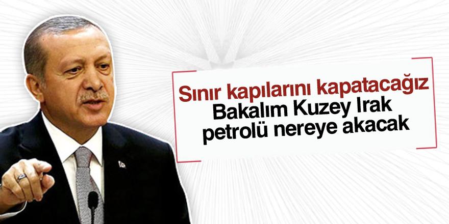 Erdoğan: Sınır kapılarını kapatacağız