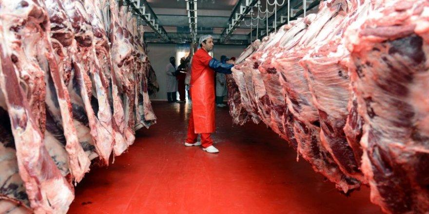 Erdoğan: 'Sırbistan'dan 5 bin ton et ithal edeceğiz'