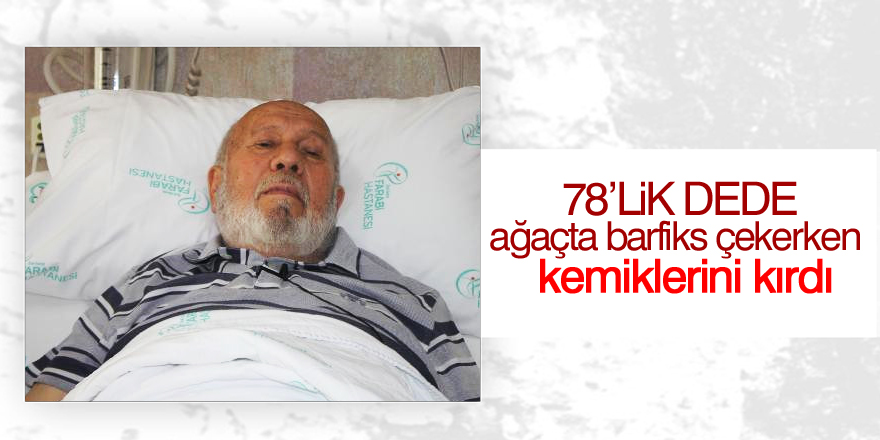 78 yaşında ağaçta barfiks çekerken düşüp, kemiklerini kırdı