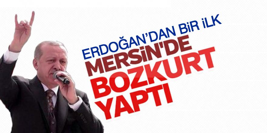 Erdoğan'dan 'bozkurt' işareti