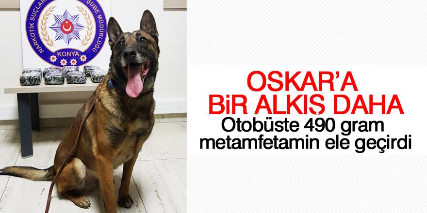 Narkotik köpeği Oscar, otobüste uyuşturucu madde buldu