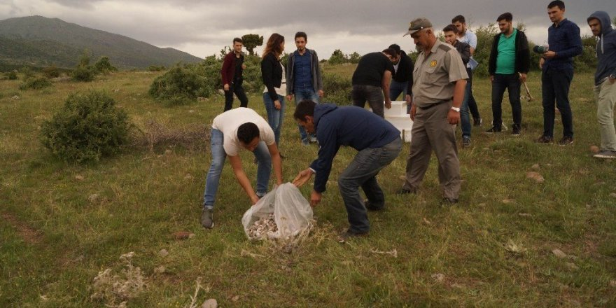 Konya'da üniversiteli öğrenciler, dağda 'Akbaba Sofrası' kurdu