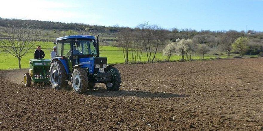 TMO, yurt dışından 140.000 ton mısır aldı
