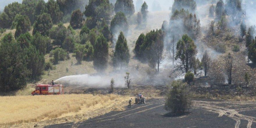 Beyşehir'de ormanlık alana sıçrayan yangın