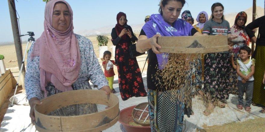 Kuraklığa Mezopotamya topraklarının 'sorgül'ü çözüm olacak