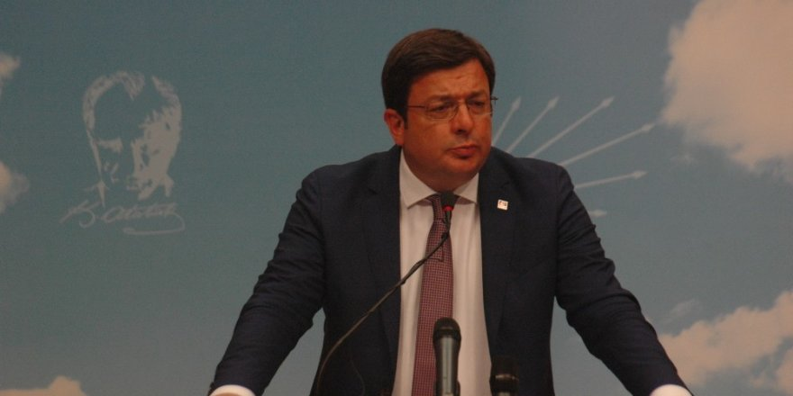 """CHP Genel Başkan Yardımcısı Erkek: """"Toplanabilecek imzanın 450-470 civarında olduğu ortaya çıkıyor"""""""