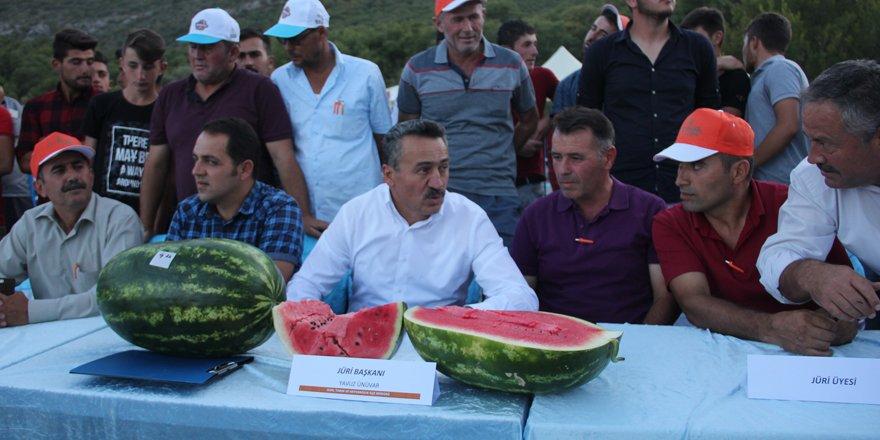 Seydişehir'de karpuz yarışması