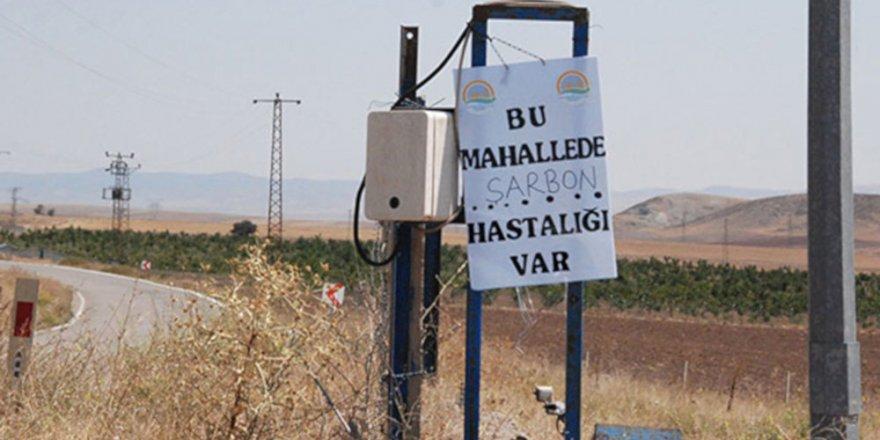 Diyarbakır'da bir çocuk şarbondan öldü