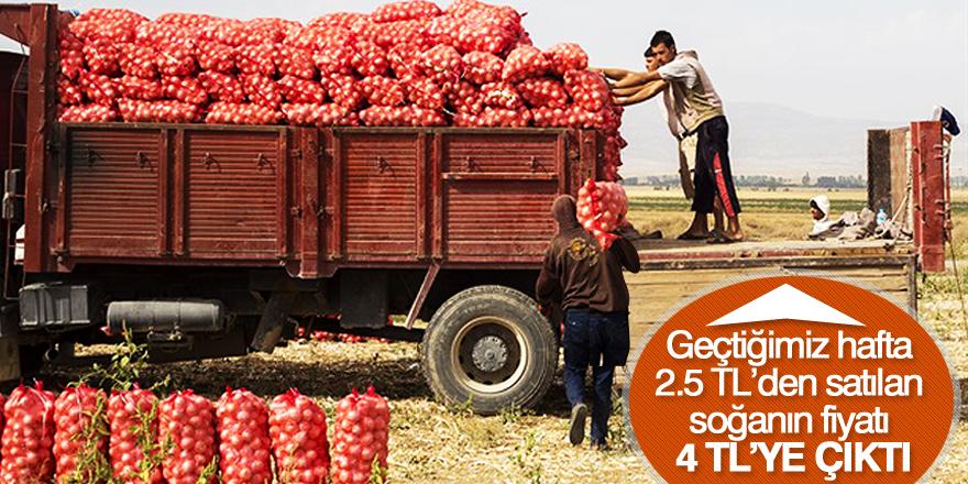 Soğan fiyatları uçuşa geçti!