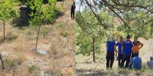 Konya'da bir çoban ölü bulundu