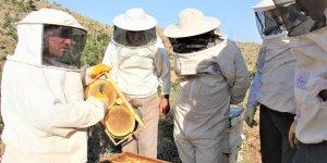 Seydişehir'de organik  bal üretimi yaygınlaşıyor