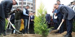 AK Partili Yavuz, Aydın'daki fidan dikme seferberliğine katıldı