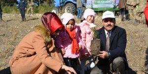 Sarıkamış'ta 700 kişilik ekiple 9 bin fidan dikildi
