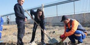 Altındağ Belediye'sinden 'Milli Ağaçlandırma Günü' etkinliği