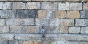 Tarihi kervansaray duvarına kafası sıkışan güvercin kurtarıldı