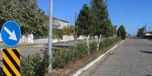 Çorlu'da ağaçlandırma ve temizlik çalışmaları sürüyor