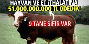 Hayvan ve et ithalatına rekor ödeme!