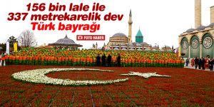 Konya'da 156 bin lale ile Türk bayrağı oluşturuldu