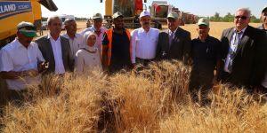 Buğday Taban Fiyatı açıklandı