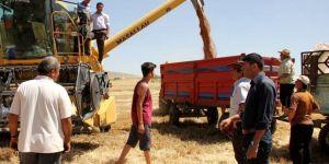 Seydişehir'de hububat hasadı başladı
